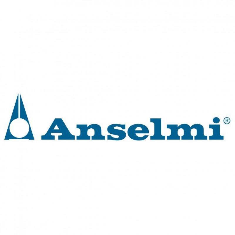 Anselmi & C. Srl