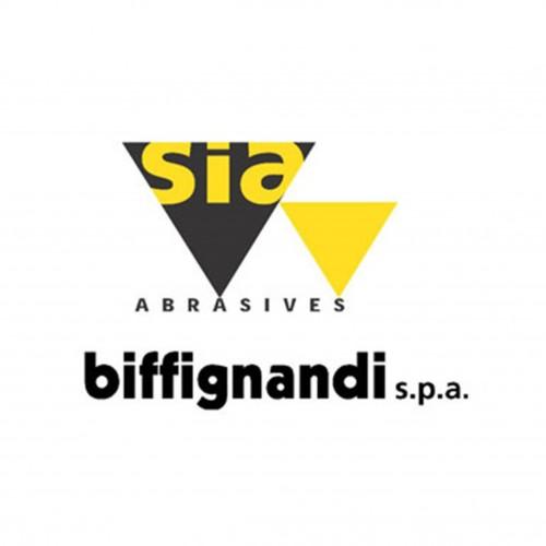 Biffignandi Spa