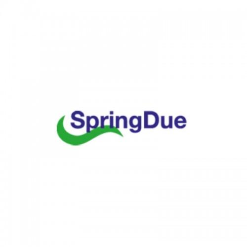 Spring Due Srl