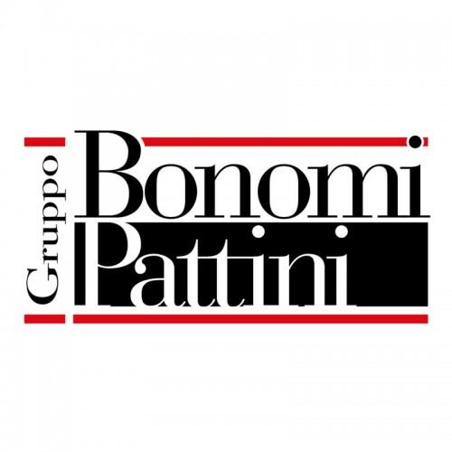 Bonomi Pattini Giuseppe e Figli S.p.a.