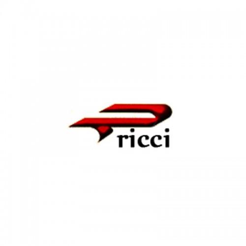 Ricci Egidio & C. Srl