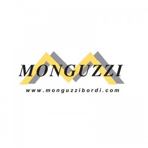 Monguzzi Srl