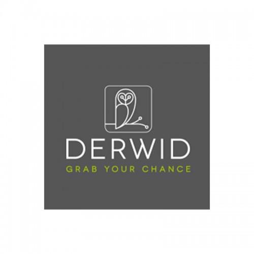Derwid - In.Tres Srl