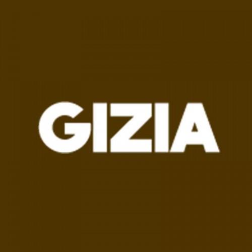 Gizia srl