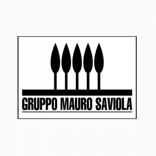 Gruppo Mauro Saviola Srl
